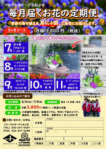 お花の定期便チラシ