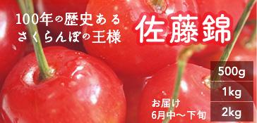 佐藤錦バナー